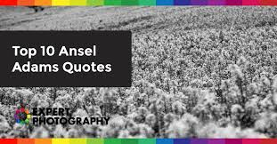 Top 10 Ansel Adams Quotes » Expert Photography