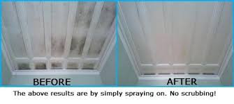 remove mold from bathroom ceiling. How To Remove Mold From Bathroom Ceiling With Vinegar Www L