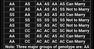 Welcome To Boma Peters Blog Photo Medical Genotype Chart