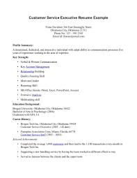 Customer Care Executive Resume Customer Care Executive Resume Resume Idea 1