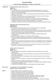 Application Consultant Sample Resume Application Consultant Resume Samples Velvet Jobs 9