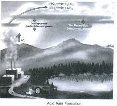 essay on acid rain definition causes adverse effects and control