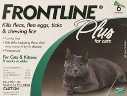 merial frontline plus flea and tick control for cats and kittens view on amazon