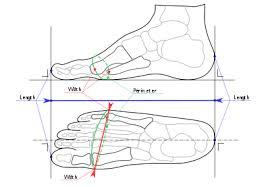 Toddler Foot Measure Chart Shoe Size Wikipedia