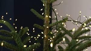 Low Priced 95f57 D81db Christmas Tree Fairy Lights