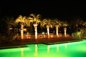exterior lighting commercial with palm trees decoration around outdoor swimming pool full size