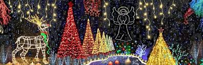 Resultado de imagem para Holiday Fantasy of Lights 2017 coconut creek