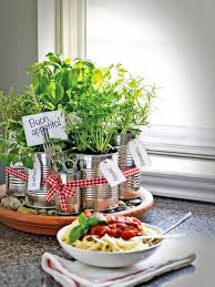 diy kitchen countertop herb garden with plant labels