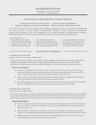 Project Management Resume Objective International Business 1