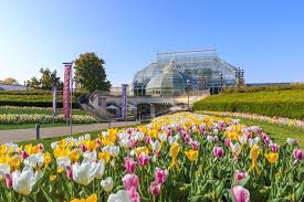 phipps conservatory and botanical
