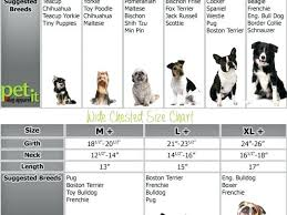 Teacup Maltese Growth Chart 61 Rational Standard Poodle Growth Chart