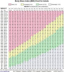Army Body Mass Index Chart Pin On Workout