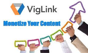 Image result for viglink