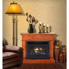 ventless fireplaces fireplace logs reviews ethanol safety procom