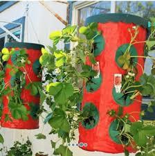 planters garden hanging vegetables