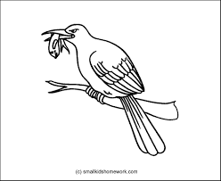 Small Picture Outline and Coloring Pictures for small kids