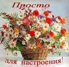 Открытки с цветами для светы