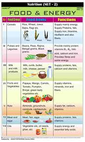 Chart Of Different Food Items Jagruti Principle Nutrition Charts Food Energy Wall Chart