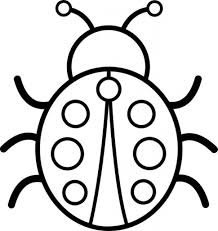 Small Picture Bug Coloring Page Printable Pictures 2440