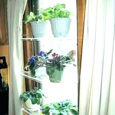 kitchen window plants sill plant shelves shelf indoor glass for diy ha