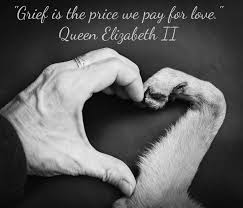 Loss Of Pet Quotes Inspiration Grief Is The Price We Pay For Love Helping Heal The Grief Of Pet