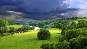 1600x900 wallpaper clouds cloudy sky gloomy gray bushes summer