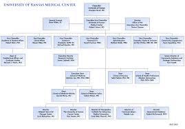 Kumc Organizational Chart