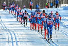 История и виды лыжного спорта доклад для урока физкультуры в классе Соревнования по биатлону