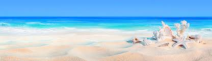 Ocean Background Hd Beautiful Beach Background Blue Sea Hd Background Image For Free