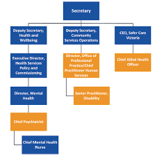 Dhhs Organisational Chart Child And Youth Mental Health Victorian Auditor Generals