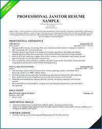 Plain Text Resume Sample Plain Text Resume Template Plain Text Resume Templates Sample Best