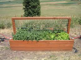 Small Picture Beautiful Box Gardening Garden Ideas Only On Pinterest Raised