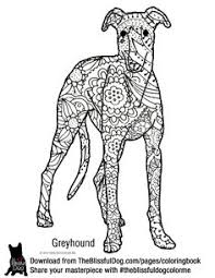 Small Picture Greyhound Coloring Book Design by Elspeth Rose Buy Books at