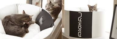 cat safe furniture. Our Products Are Safe For Animals And Humans. Cat Furniture H