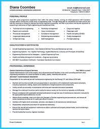 Data Entry Resume Resume Letter Writing Professional Resumes