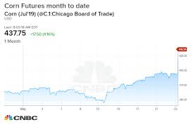 Corn Commodity Price Chart Corn Futures Gain 15 In May As Soft Commodities Rally On
