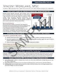 Executive Resume Sample Chief Executive Officer Executive Resume