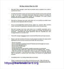 30 60 90 Business Plan Template Word Day Action Plan Template Sales