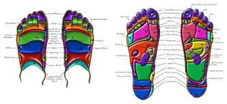 Reflexology Pressure Points Chart Foot Reflexology Pressure Points Chart Body Feet Point Map