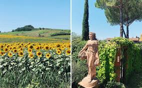 In rome last night, italian tenor andrea bocelli delivered a powerful performance of giacomo. You Can Visit Andrea Bocelli S Family Vineyard In Tuscany And Even Record Your Own Song In His Studio Travel Leisure