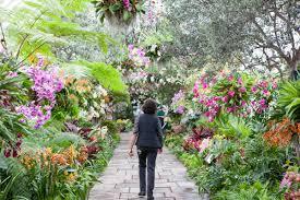 new york new york botanical garden