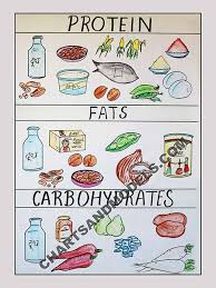 Diet Chart For Students Buy Proteins Fats Carbohydrates In Food Charts Online Buy