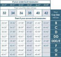 Bra Size Measurement Chart India Bra Cup Size Chart Cm
