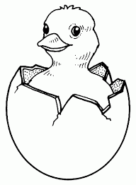Small Picture Chicken Easter Coloring Pages Baby Chicks Easter Coloring pages