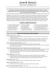 Sales Manager Resume Templates Fascinating Regional Sales Manager Resume Nulonus