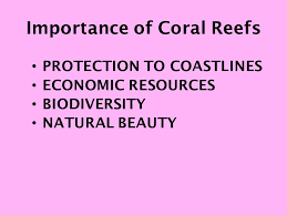 hw complete coral reef essay prompt due friday chapter  7 importance of coral reefs protection to coastlines economic resources biodiversity natural beauty