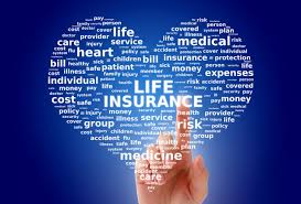 life insurance quote no personal information mesmerizing quick auto insurance quote no personal information