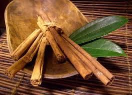 huile essentielle Cannelle ecorce infection-diarrhée-verrues