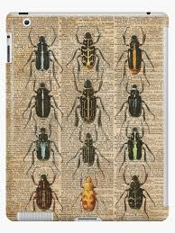 Beetles Bugs Insect Chart Biological Illustration On Vintage Dictionary Book Page Background Ipad Case Skin By Dictionaryart