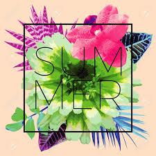 熱帯の葉と色とりどりの花の蘭の上のおしゃれなフレームのスローガン夏の